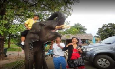 thaimassage tyresö thai eskilstuna